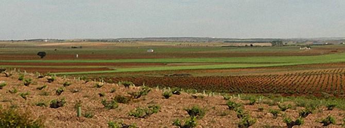 XVIII Coloquio de Geografía Rural